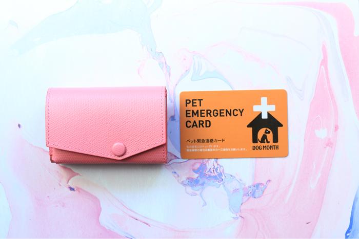 小さい財布とカード