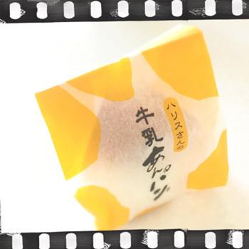 ペリー下田 (9)