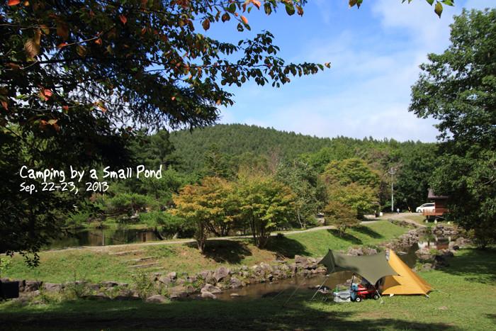 pond1 (5)