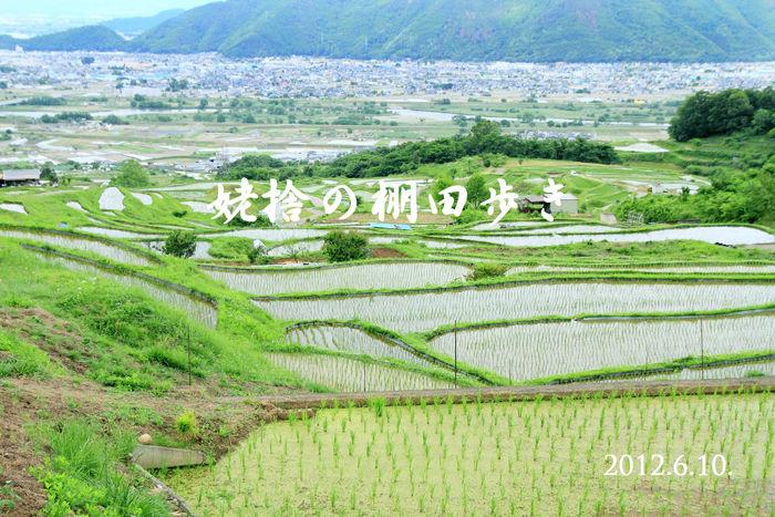 棚田歩き-(1)