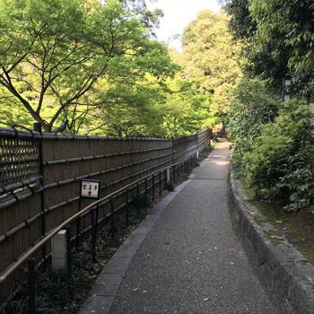 徳川園 通路