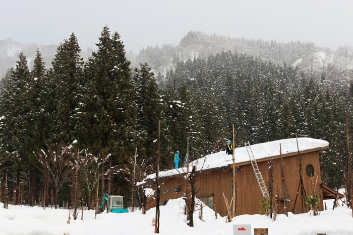 冬の里山 (6)