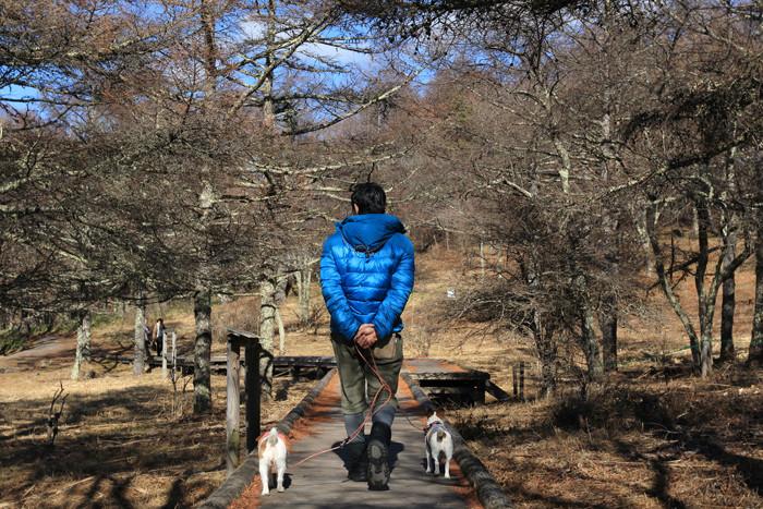 八ヶ岳3 (2)