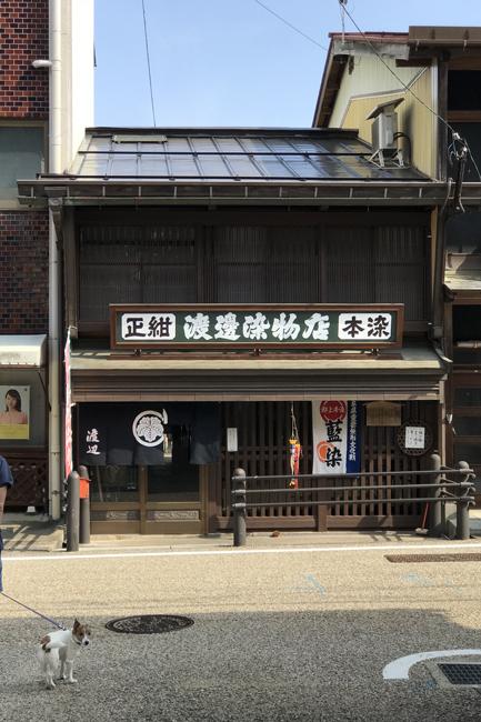 郡上八幡わんことオサンポ (2)