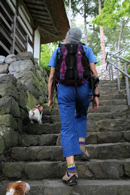 棚田歩き (21)