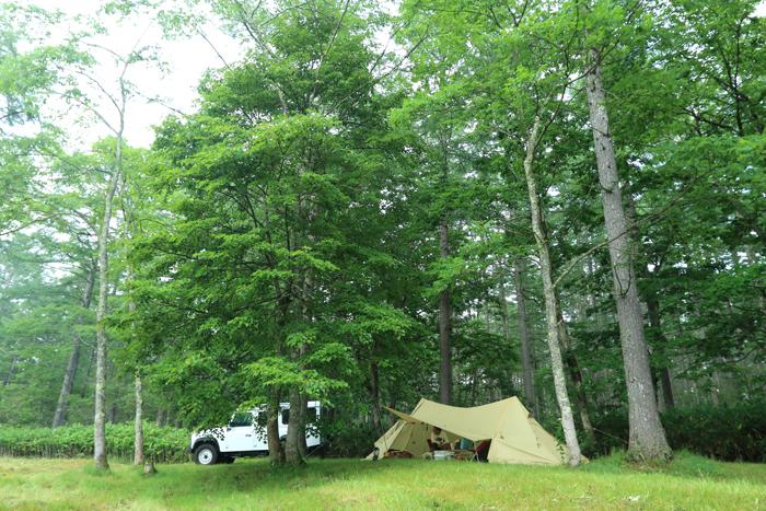 キャンプ写真夏2
