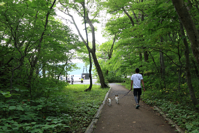 0820-1(12)十和田湖散策
