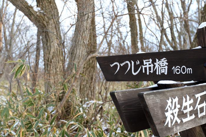 いつものキャンプ2 (4)