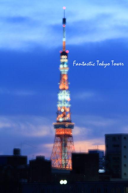 tokyo-sun2