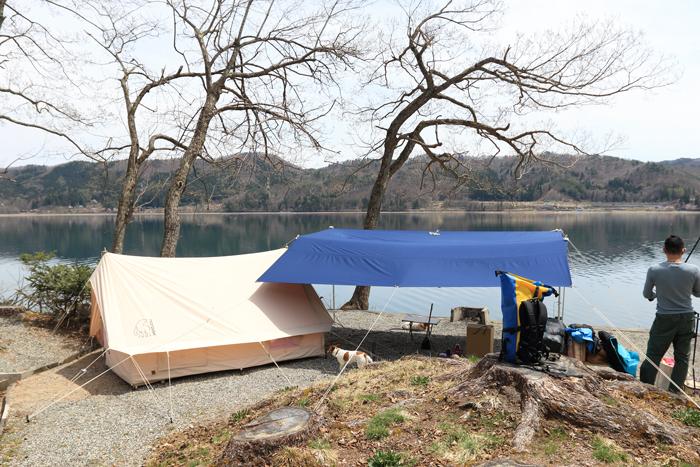 わんことキャンプ (2)