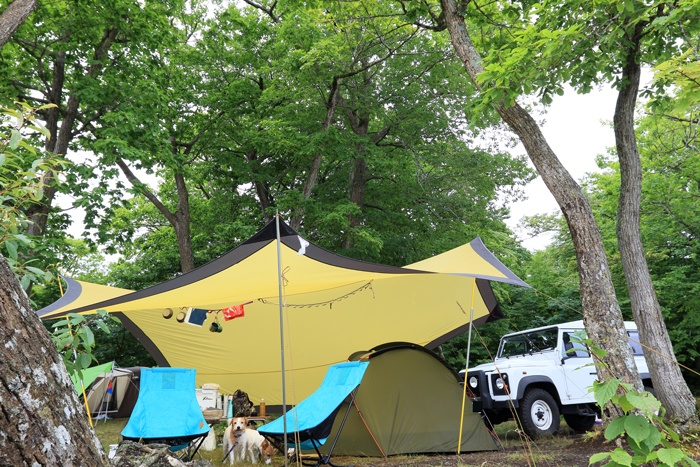 0818 (3)キャンプ場