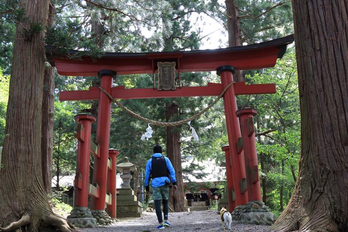 野尻湖宇賀神社 (4)
