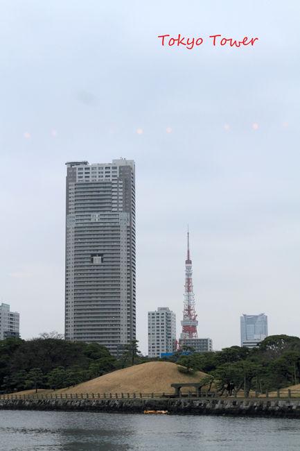 隅田川 (7)