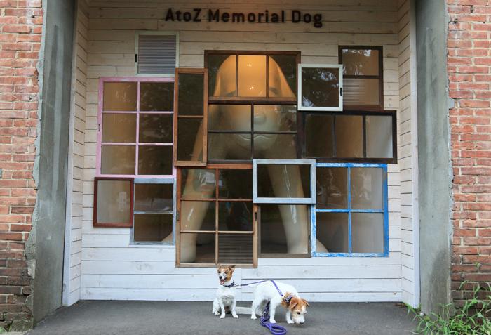 0813-2(14)A-Z dog