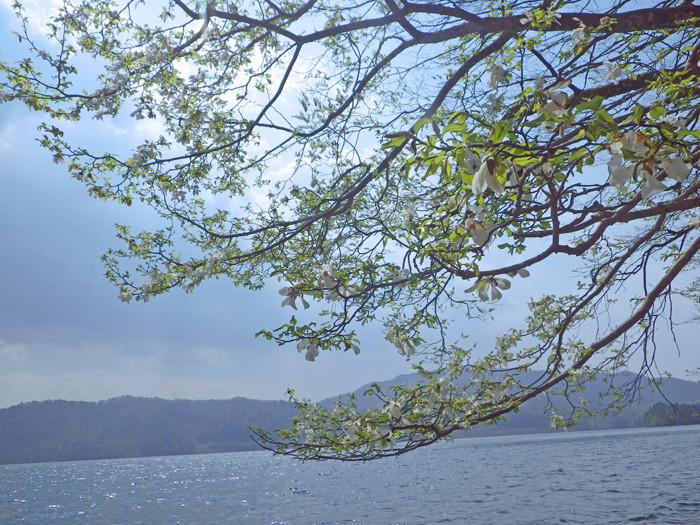 lake2 (7)