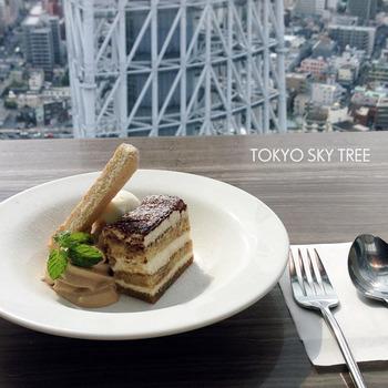 skytree (4)
