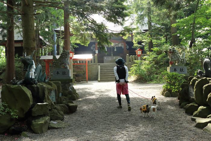 野尻湖3 (11)