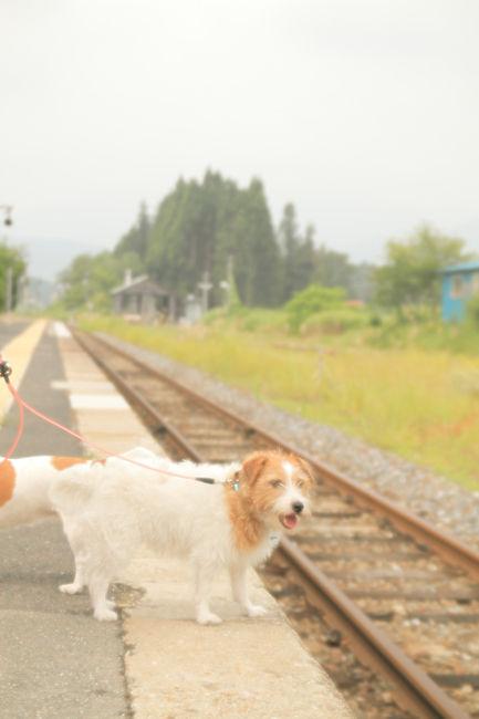 鉄道 (3)