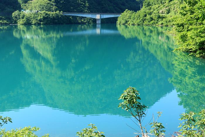 sup桂湖エメラルドグリーン (3)