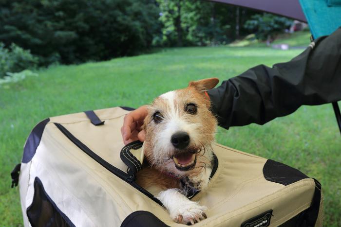 犬キャンプクレート