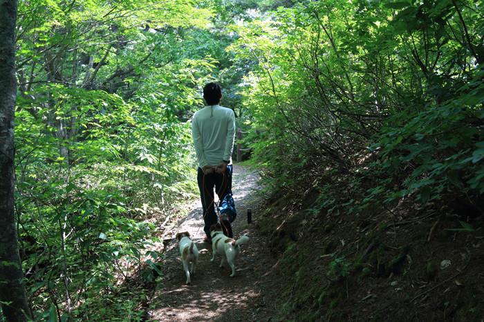 奥只見 (7)