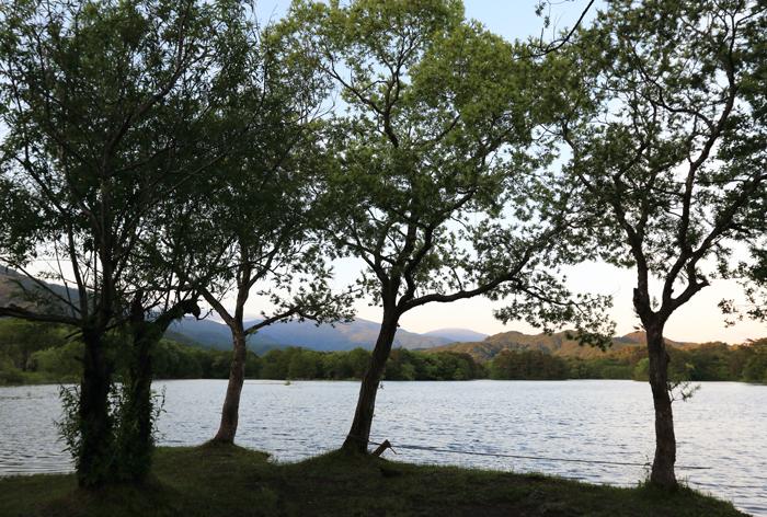 小野川湖水位 (1)