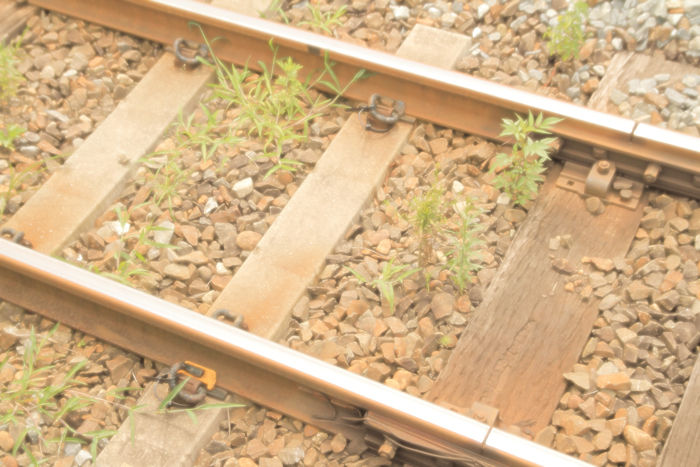 鉄道 (9)