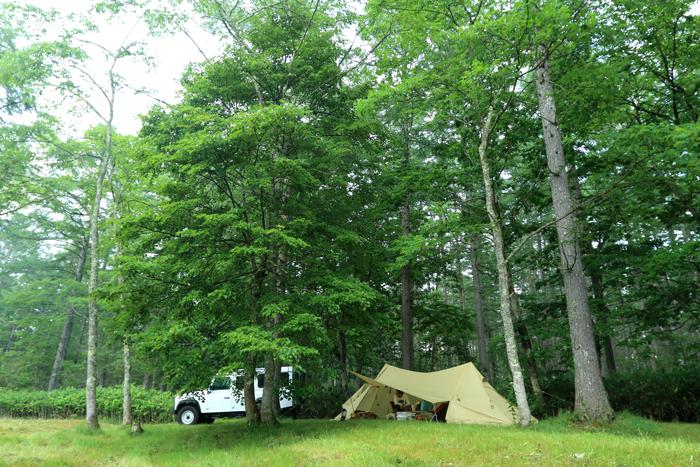 犬キャンプテント