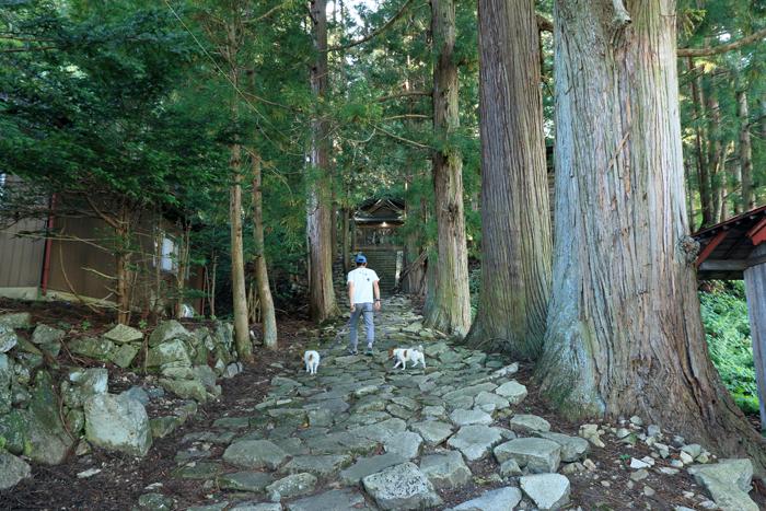 木崎湖2-2 (7)諏訪神社