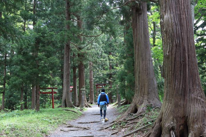 野尻湖宇賀神社 (3)