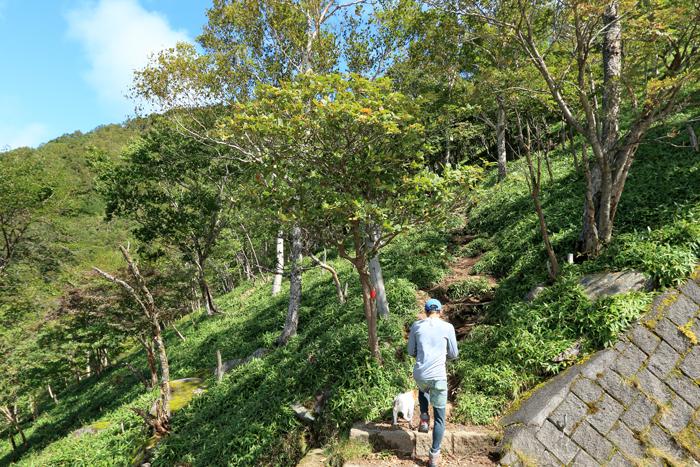 中禅寺湖1 (2)半月山