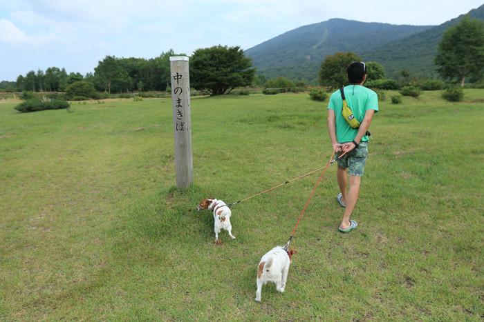 夏休み10 (4)