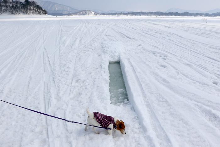 檜原湖雪 (4)
