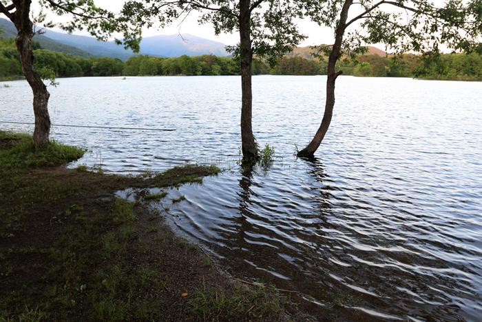 小野川湖水位 (2)