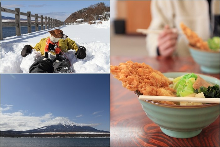 富士山 (8)