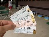 ゴンドラ チケット
