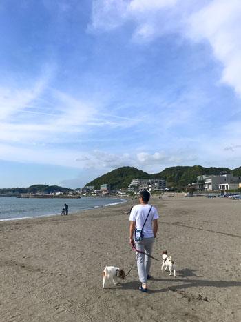 森戸海岸 (1)