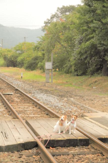 鉄道 (10)