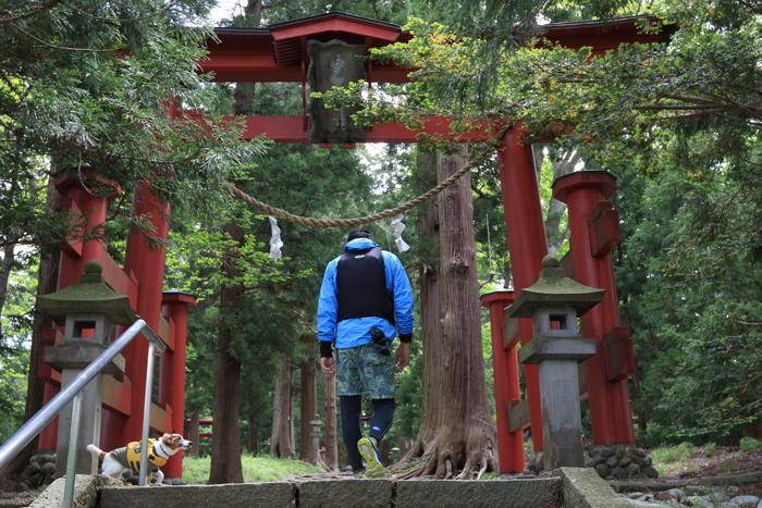野尻湖宇賀神社 (2)
