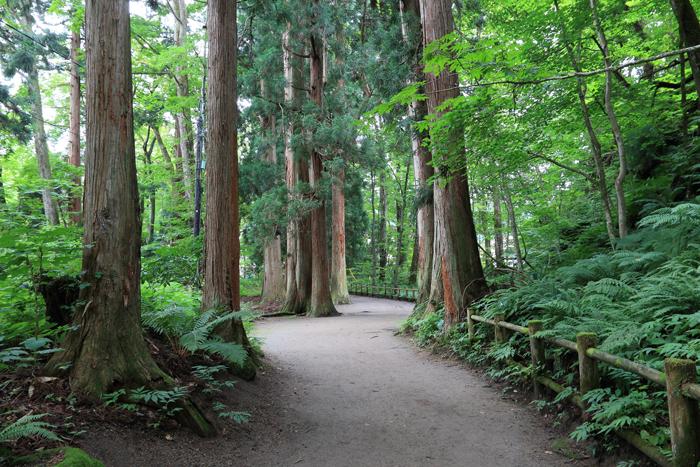0820-1 (7)十和田神社