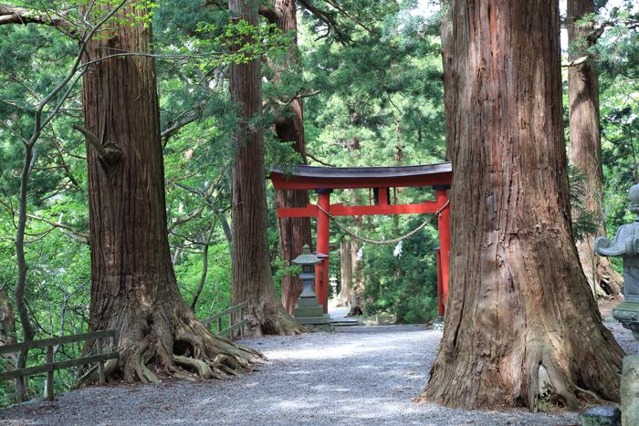 野尻湖宇賀神社 (5)