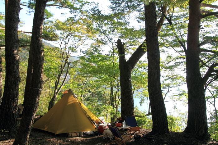 キャンプ (3)