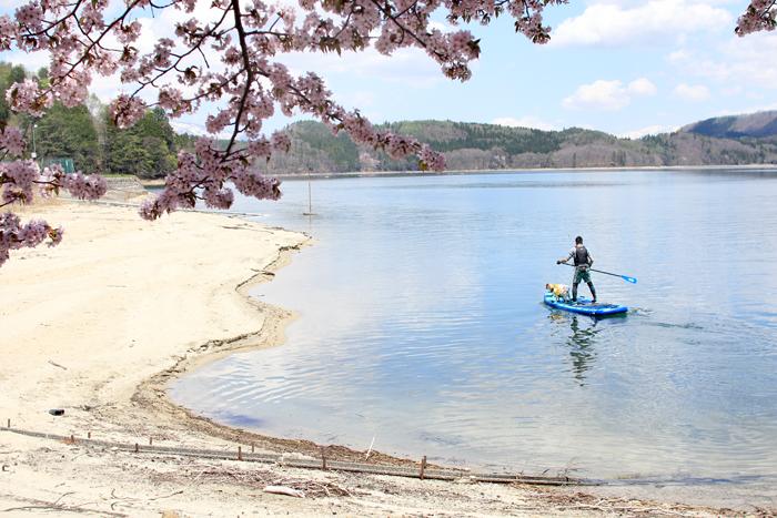 青木湖桜 (6)