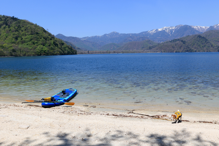 中禅寺湖SUP (1)