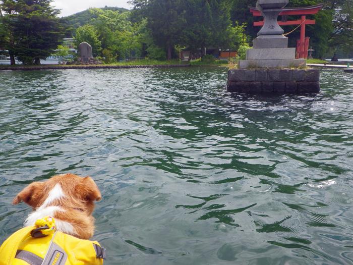 野尻湖SUP (5)