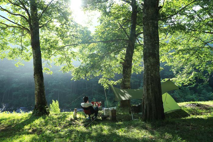 キャンプ夏
