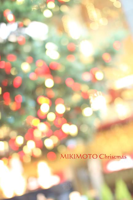 ミキモト (1)