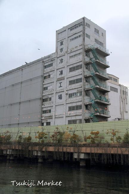 隅田川 (6)